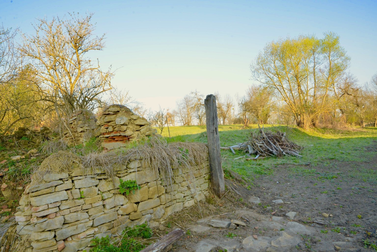 Old Ruin and Orchard