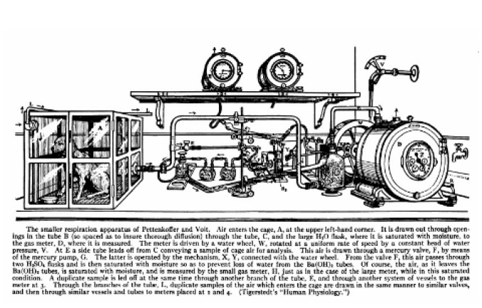 RESPIRATION APPARATUS, PETTENKOFER AND VOIT.png
