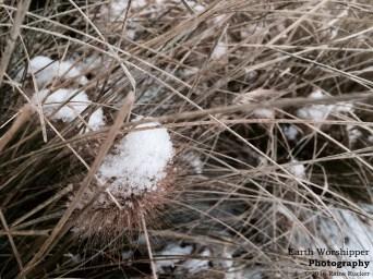 Snow I