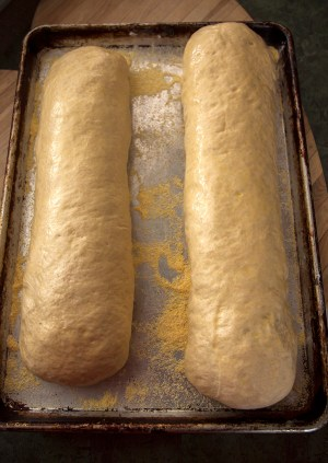 Two loaves ready for the oven
