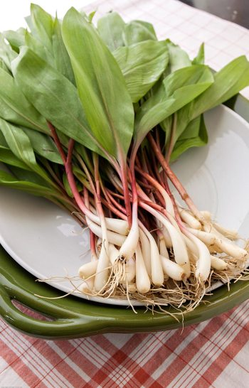 Ramps on a Green Platter