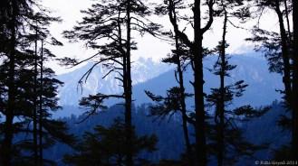 The mighty Himalayas as viewed from Jigme Dorji National Park, Thimpu