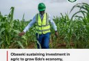 Obaseki sustaining investment in agric to grow Edo's economy, create jobs, others