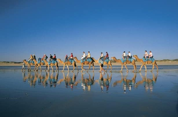 Evening camel ride on Broome's Cable Beach.