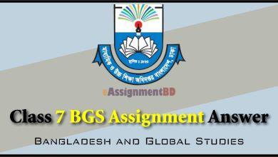 Class 8 BGS Assignment Answer