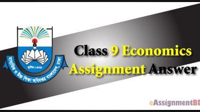 Class 9 Economics Assignment Answer