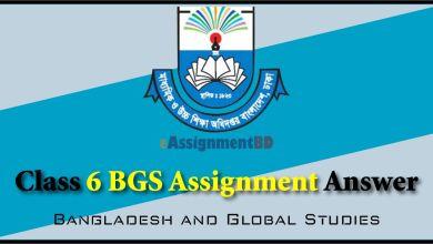 class 6 BGS assignment