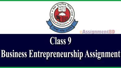 Class 9 Business Entrepreneurship Assignment