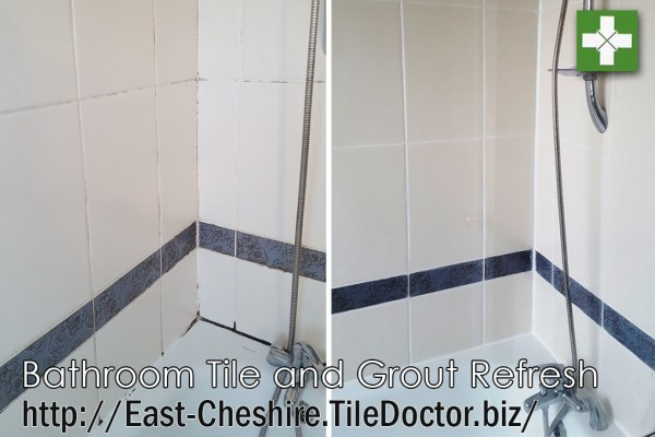 Bathroom tile and grout before and after refresh in Hale Village