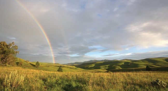 Kitulo Plateau National Park