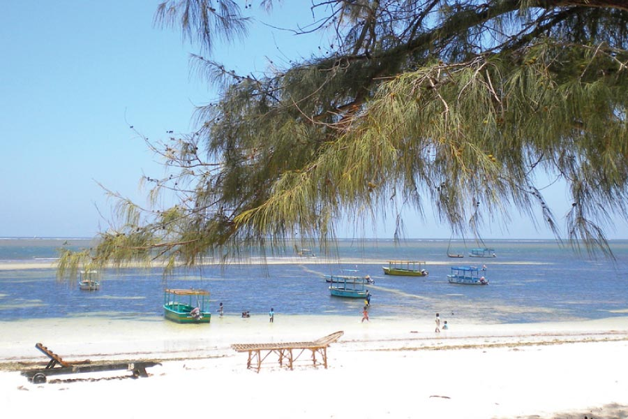Malindi Marine National Park & Reserve
