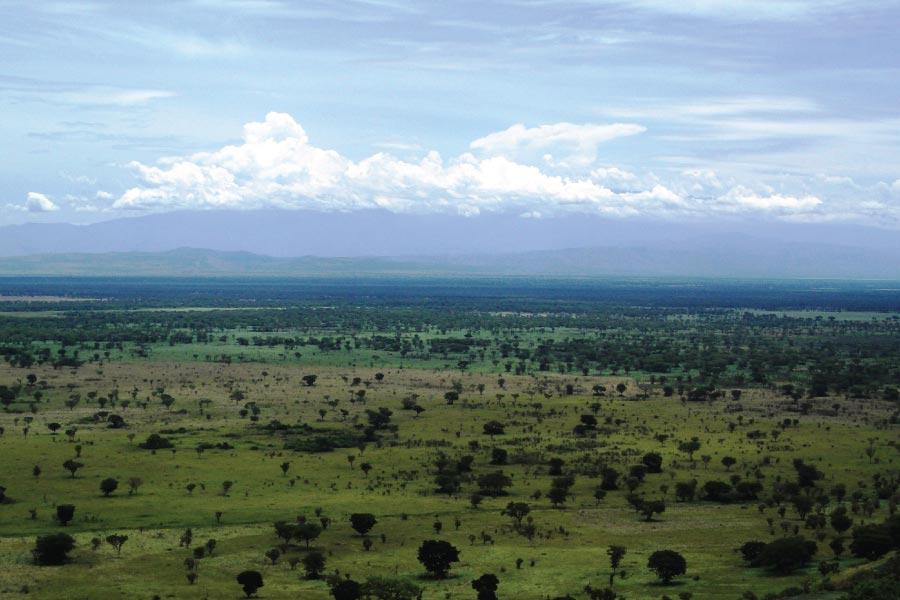 Queen elizabteh National Park, Savanna Wildlife Safari, Uganda Safari