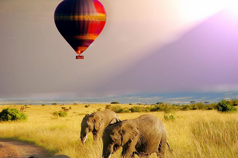 kenya mara balloon safari