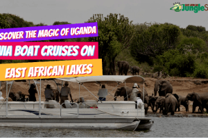 Discover The Magic Of Uganda Via Boat Cruises On East African Lakes