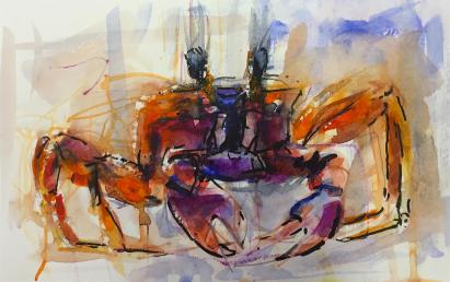 Daniel Smith Watercolour Award for an Artist under 35 - Caribbean Crab by Freddy Paske