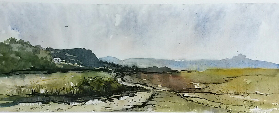 Looking Towards the Tors, Dartmoor by Penny Newman