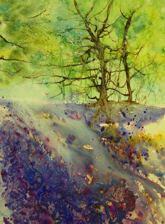 Bluebell Walk by Mita Higton
