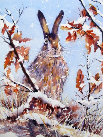 Hare In Winter by Chris Lockwood