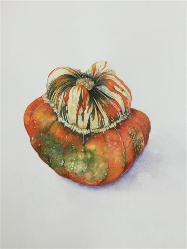 The Brush Award: Turks Turban Squash by Sarah McGonigle