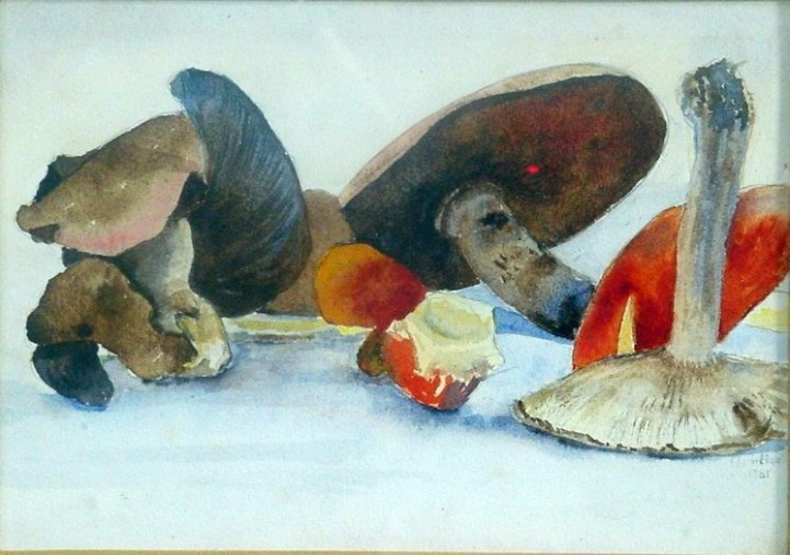 Mushrooms and Toadstools. Watercolour by Charles Nightingale