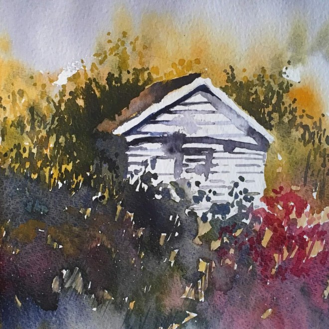 The white shed by Penny Newman (unframed)