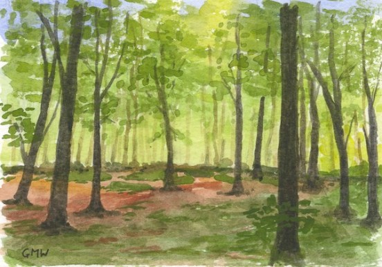 Spring Woodland by Gillie Whittle