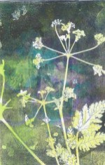 *SOLD* Weed by Sue Downie