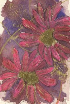 Echinopsis by Caroline Furlong