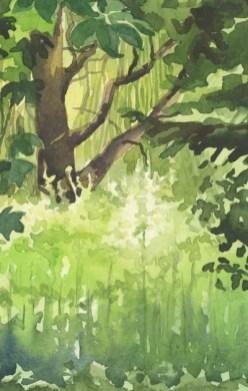 Green Vegetation by Helen Otter