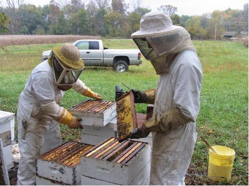East Bay Beekeeper Co-op