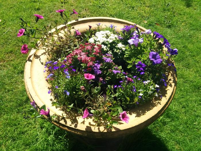 Central planter in garden