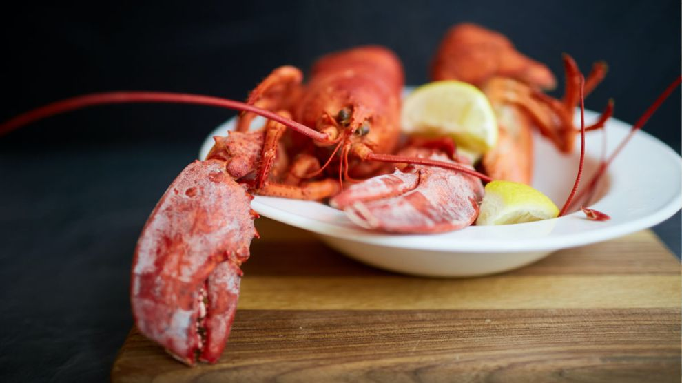 Lobster Cracking 101 how to from an East Coast Expert