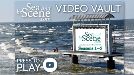 SABS video vault SEA AND BE SCENE TV s 1 to 5 feature(1)