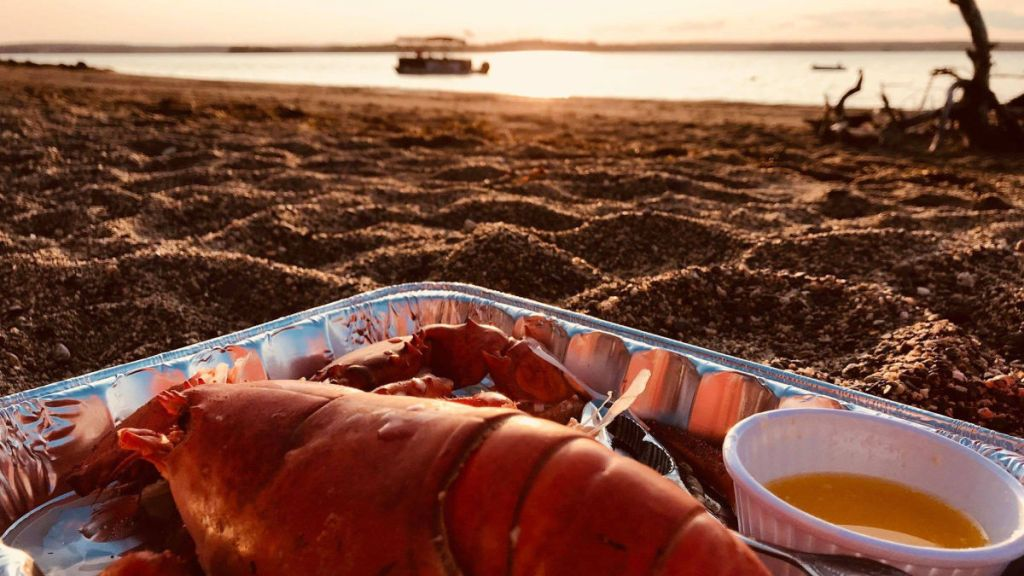 SALTY DOG SEA TOURS sea to shore island lobster feasts