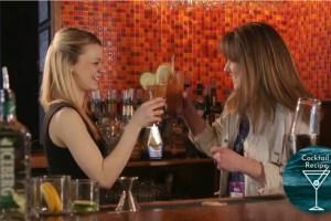 Martini Bar Partidge Berry Ice Tea