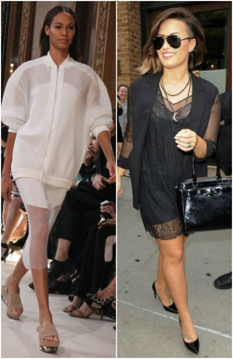 celebs with mesh jackets, Celebs and Runway Models