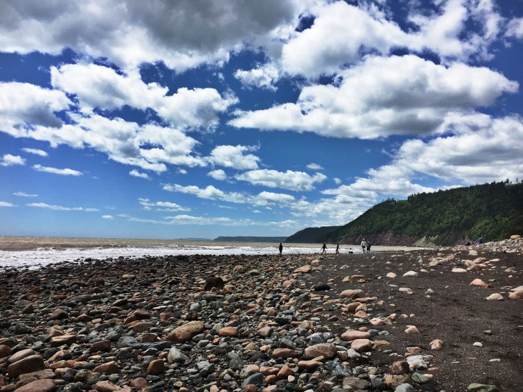 Long Beach July - Fundy Trail Parkway