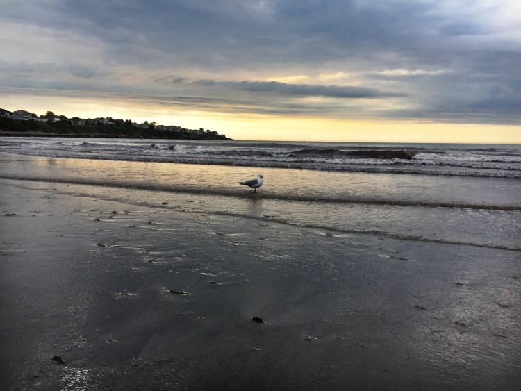 long-sands-beach-york-maine-east-coast-mermaid