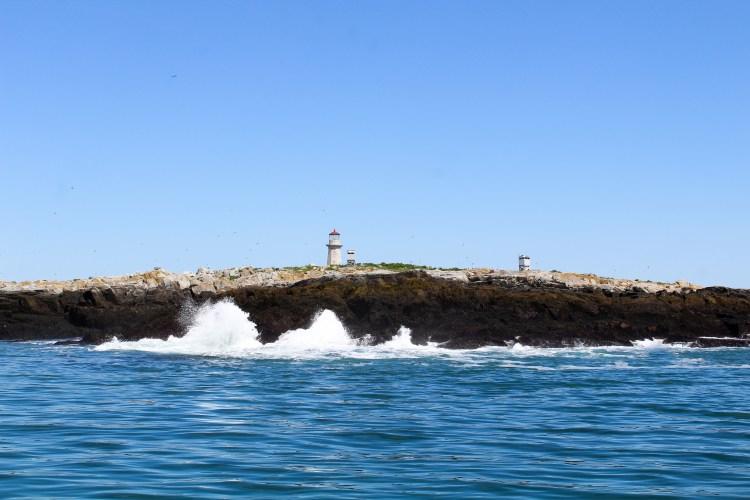Machias Island 21