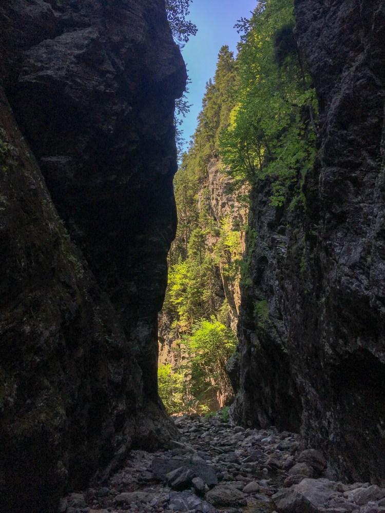 Walton Glen Gorge 21