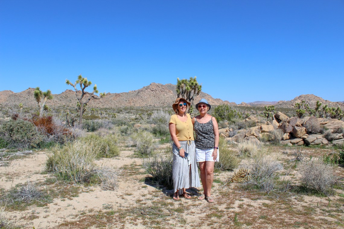 Joshua Tree National Park 4