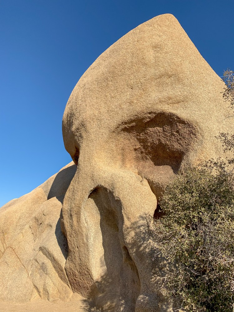 Skull Rock - Joshua Tree National Park