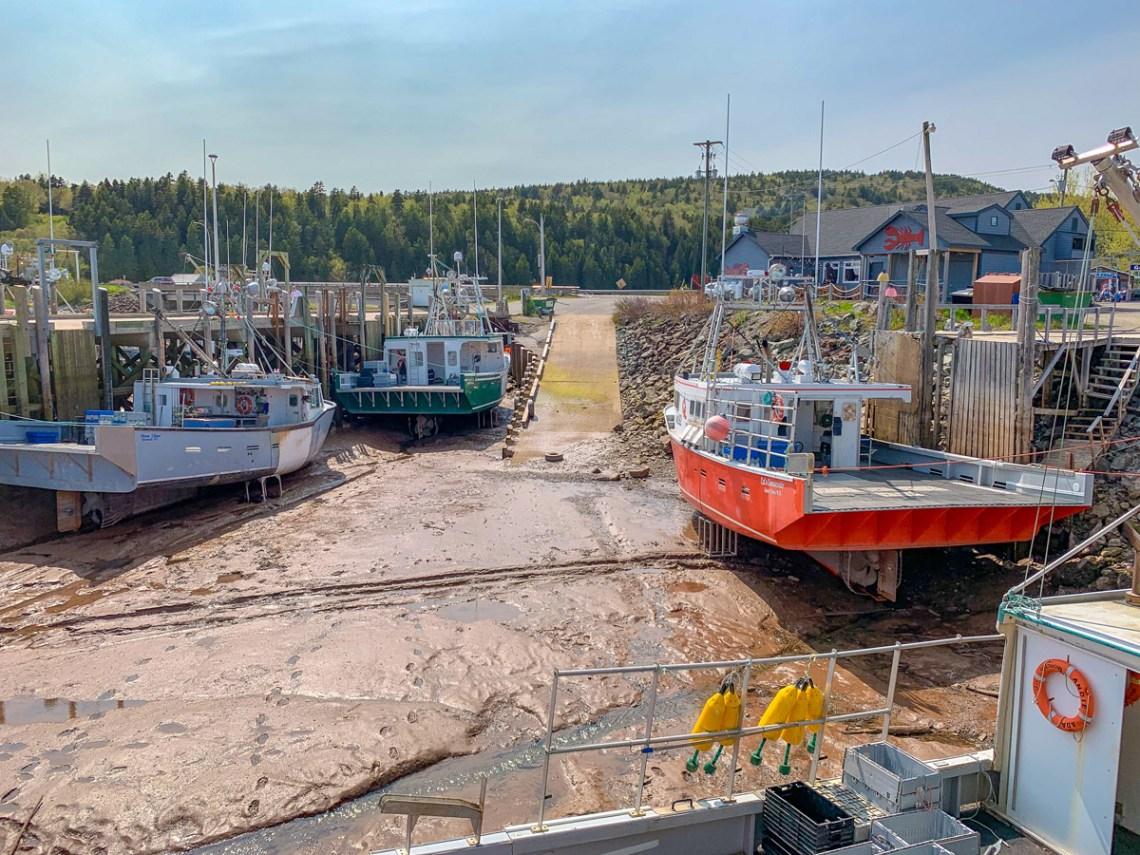 Alma - New Brunswick - East Coast Mermaid