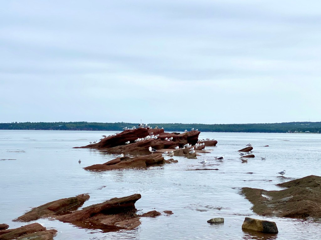 A Fall Getaway to St. Andrews by the Sea, New Brunswick