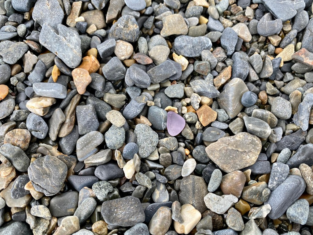 Tumbled purple seaglass on the beach during Campobello Island Seaglass Festival