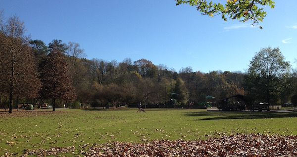 East Cobb Park fall
