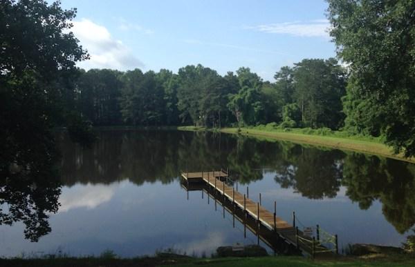Ebenezer Road park, Cobb parks master plan