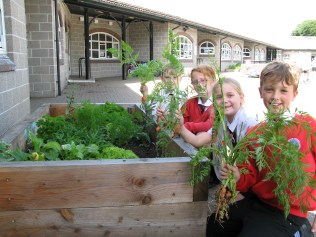 Matthew, Chloe, Isobel and Aaron show what can be grown in raised beds