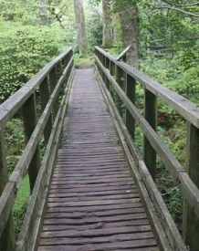 The gateway to the trail