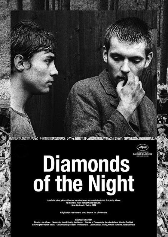 Diamonds of the Night with english subtitles